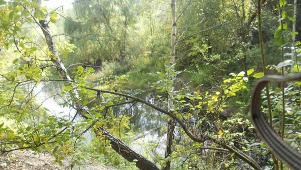Liban quarry pond/marsh