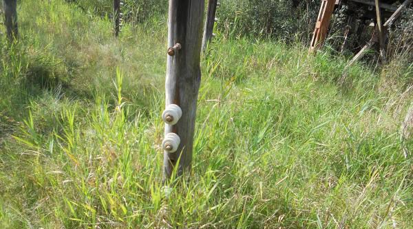 Close up photo of the fencepoles