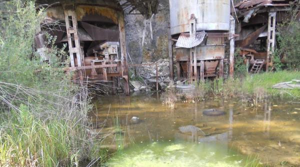 Swampy base of the big structure