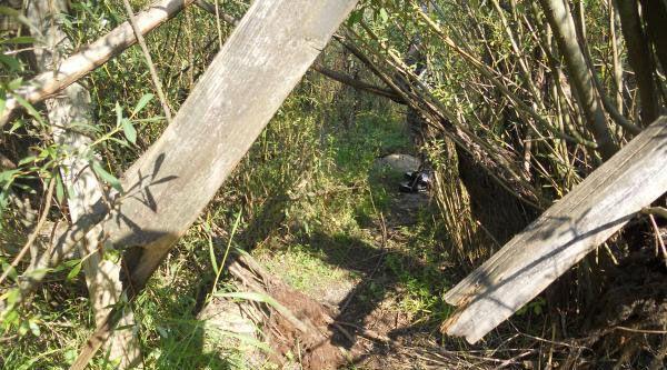 A hole/gap we had to climb through