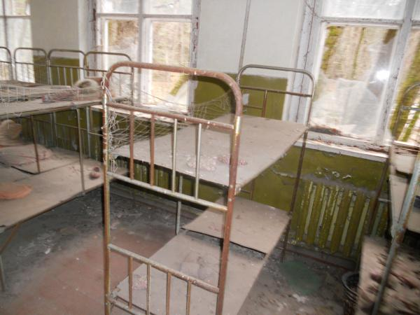 Abandoned nursery beds